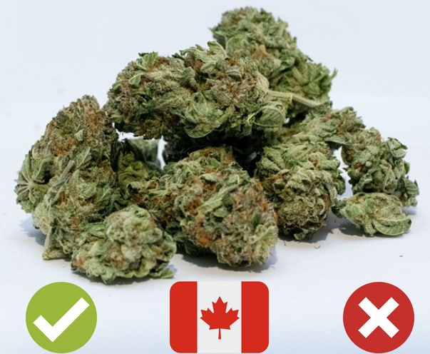 Marijuana legalization in Canada, on thursday senate will be voting on c 45 bill