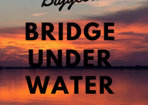 New logo for bridge under water. Hopefully this 300 x 300 photo will become one of the main photos which will be used when talking about Chesapeake Bay Tunnel-bridge