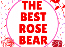 The best rose bear, within this buying guide I will reveal which one of these teddy gifts is the best and for the best price.