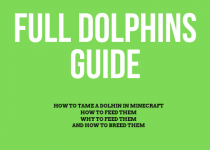 Full dolphins guide, if you want to know How to Tame a Dolhin in Minecraft you need to read carefully this whole guide, you will also learn how to feed them, how to breed them and why you should actually feed them