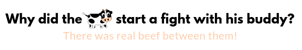 Why did the cow start a fight with his buddy? is listed as number 15 on the list of best & funniest Cow Puns