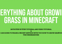 how to make grass grow in minecraft? Don't worry it is not that hard of a process, I will teach you that with this article within few minutes! learn it, it is worth it